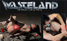 Wasteland review
